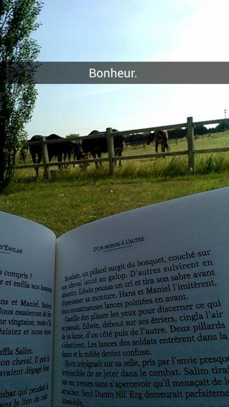Parce que j'ai dévoré les deux trilogies d'Ewilan et la trilogie d'Ellana assise confortablement devant leur pré, sous la chaleur du soleil ♥