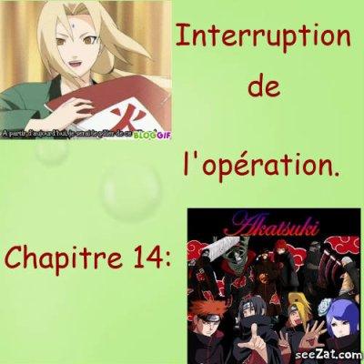 Chapitre 14: Interruption de l'Opération.