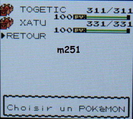 Périple Pokémon OA VC 3DS  2/2
