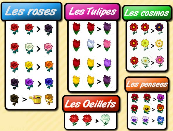 Les mélanges de fleurs
