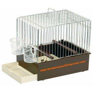 Cage d écolage
