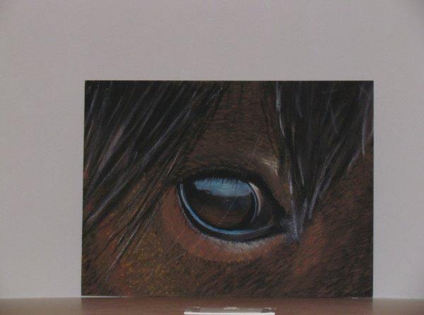 Oeil de  cheval au pastel