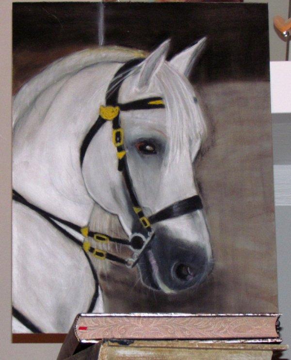 Nouveau portrait d'un cheval que j'ai réalisé au pastel