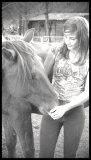Photo de horses-a-dreamx3