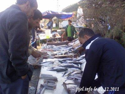 Vente de poissons frais et chers sur la voie express