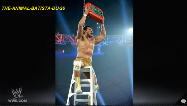 Résultats Complets du Money in the bank 2011