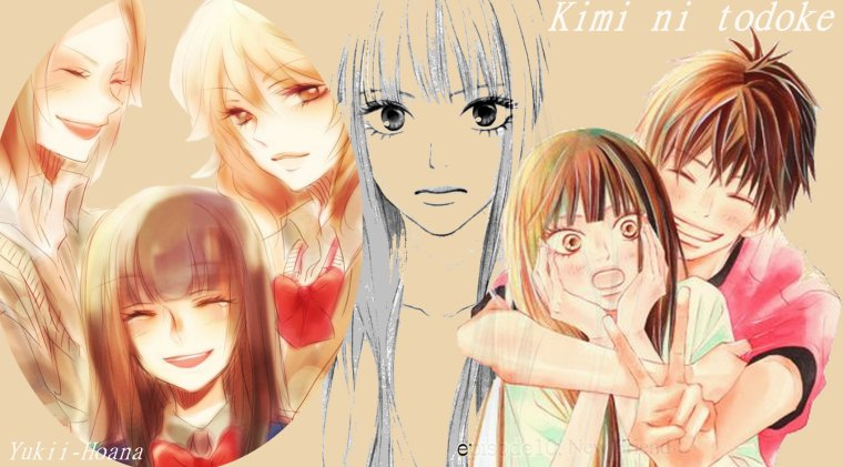 Kimi ni Todoke / Sawako