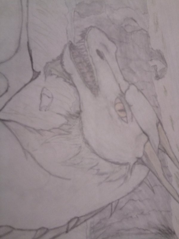 dessin de ma soeur, dragon