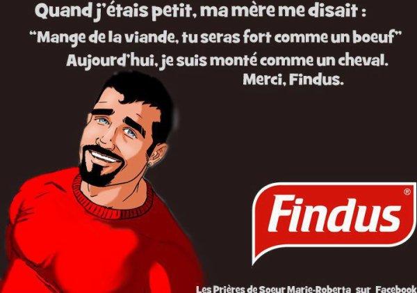 Humour Findus!