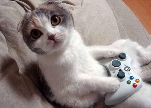Il était juste en train de jouer à GTA 5 !