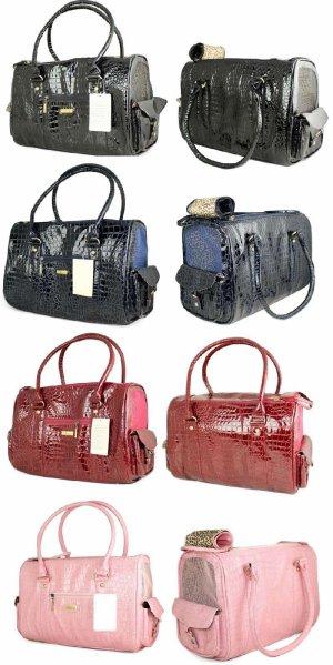 Laisses , sacs, ou poussettes ?