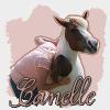 Canelle-x3
