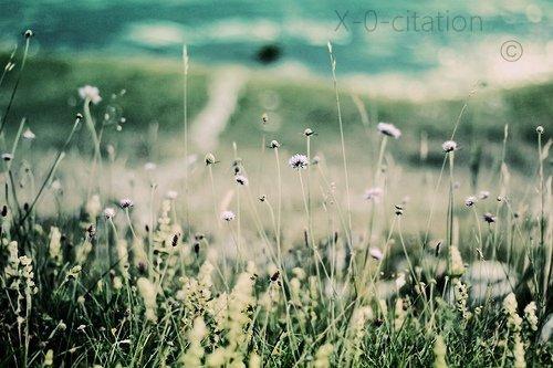 † - « Le temps passe, les choses changent, les gens nous font sourire et nous décoivent, parfois on continue sans y prêter attention, mais au fond, on oublie rien, on sourit en disant que tout va bien. » ♥ †