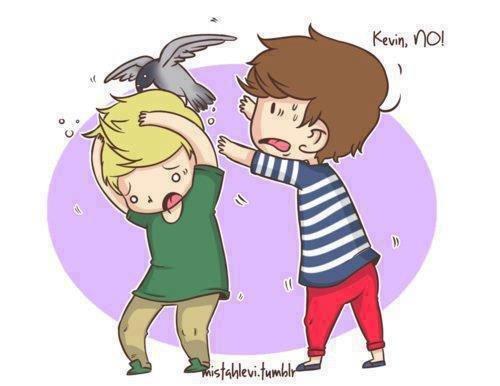Kévin le pigeon