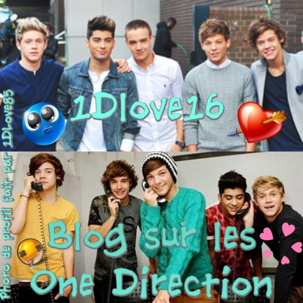 Photo de profil pour 1Dlove16 :
