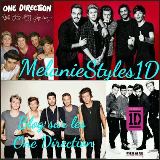 Photo de profil pour MelanieStyles1D :