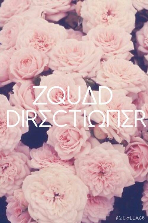 Sorry ! I'm not Zquad, I'm not Directioner, I'm Zquioner !
