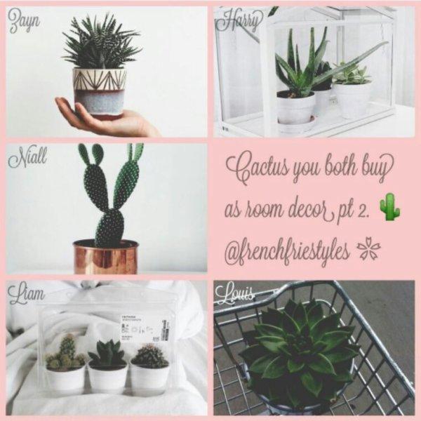 Liam c'est mimi les petites cactus !