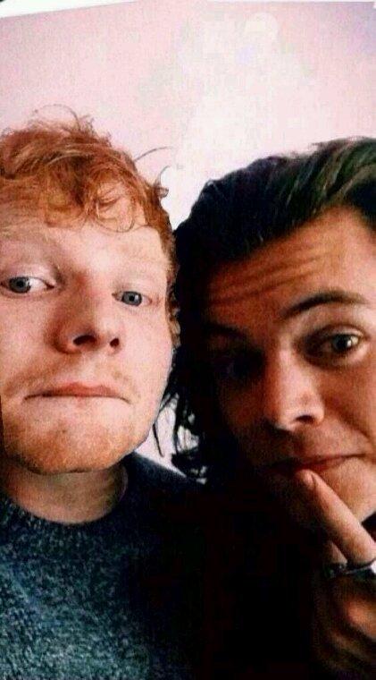 Ils sont mimis ! Pour Ed Sheeran c'est trop bien !
