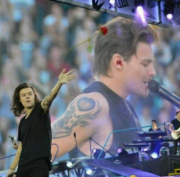 Harry Styles, lanceur de rose professionnel !