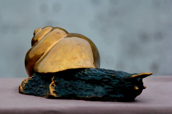 """Escargot""                bronze"