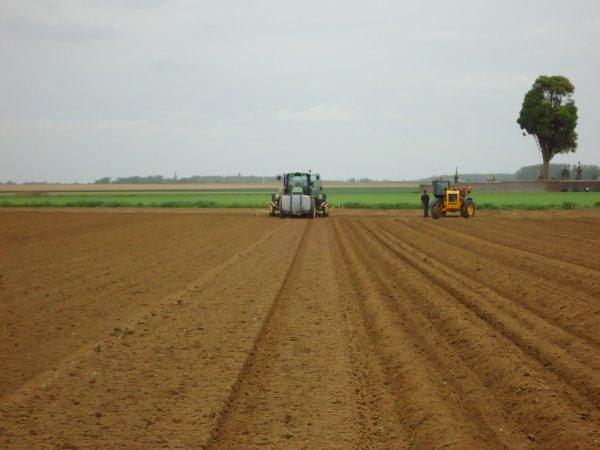 Plantation des PdeT 2012