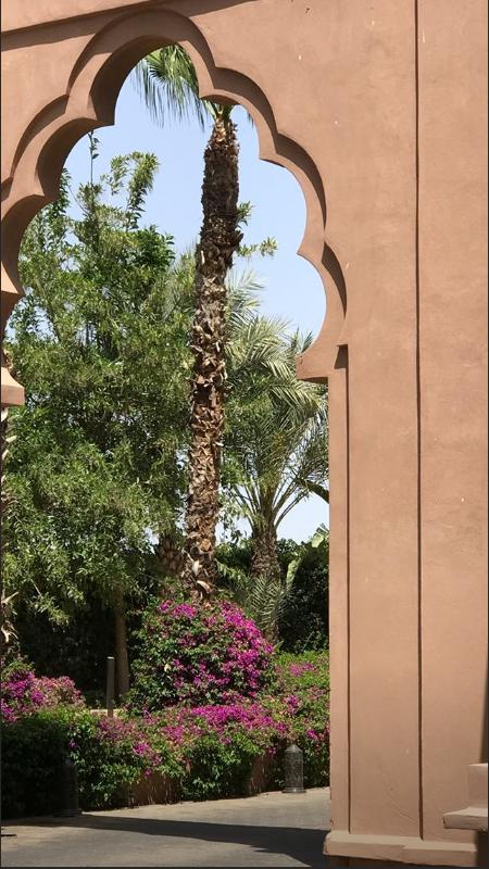 Bill Instagram Story le 10.07.2018  - 🏛️🌺🌴🕌 - Quelqu'un peut-il m'épouser ici? 🙏🏻 - 🌿🏛️ - 🌵
