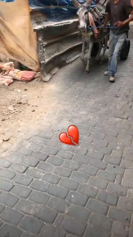 Bill Instagram Story le 11.07.2018 - #marrakeching  - 💔