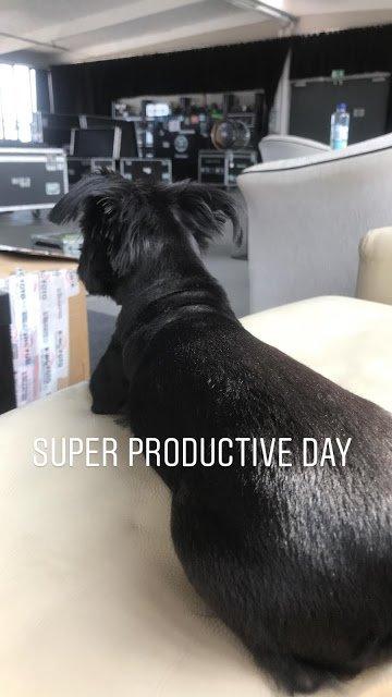 Bill Instagram Story le 21.07.2018 - jour super productif 🙈 - ❤️