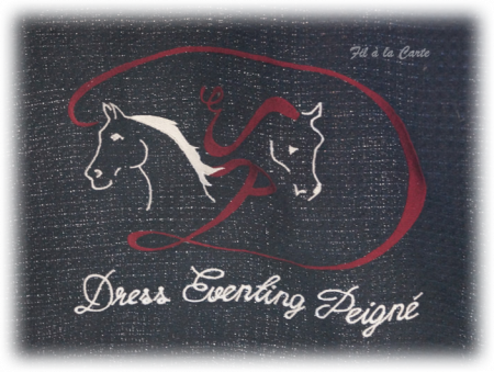 Chemise cheval brodée