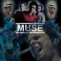 Photo de muse-officiell