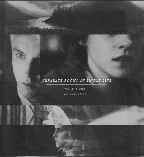 «Sombre histoire.»