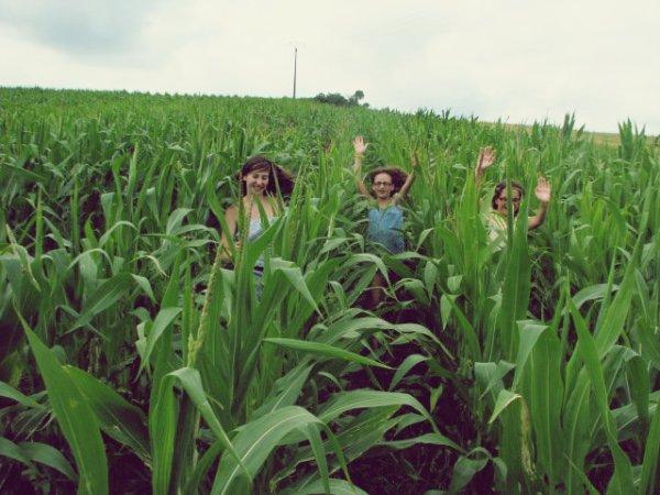Courir dans les champs,se maquiller,danser,chanter,se dire ses secret,rigoler,faire des gateaux,jouer à la wii,..