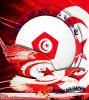équipe nationale tunisie