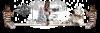 Noël pour les bénéficiaires des Restos-du-Coeur aujourd'hui..j'ai pris du retard, pardon les ami(e)s.....Bonne fin de soirée et douce nuit - A demain