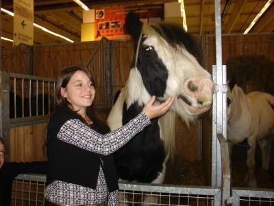 Salon du cheval a paris for Adresse salon du cheval paris