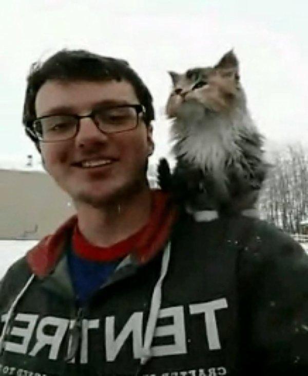 Une petite chatte de ferme s'est dirigée vers un charpentier et a réclamé son épaule