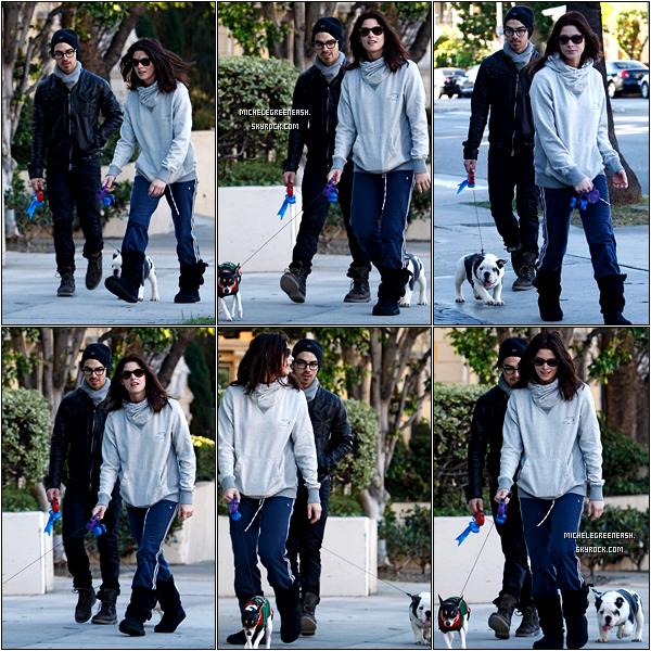 .  26 novembre 2010 - Ashley et son boyfriend Joe Jonas promenaient leurs chiens, en tenues décontractées..
