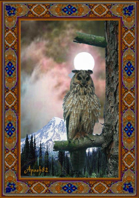 Le Hibou grand-duc clair de lune.