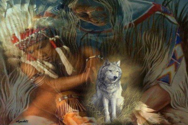 Au coeur de la sagesse amérindienne - L'esprit d'harmonie des Amérindiens à travers les cycles lunaires