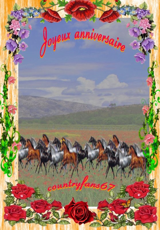 une carte d'Anniversaire  pour mon ami countryfans67