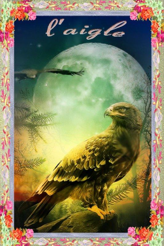 voila un l'aigle