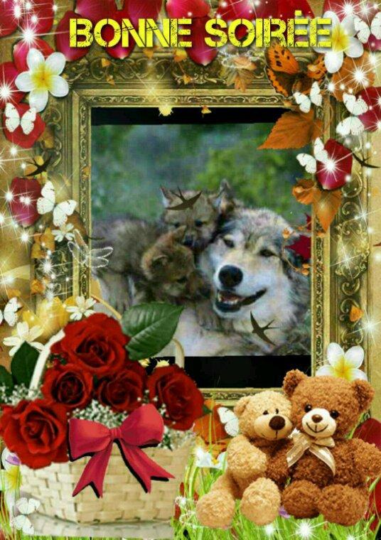 Apash82 vous souhaite  une bonne soirée à tous