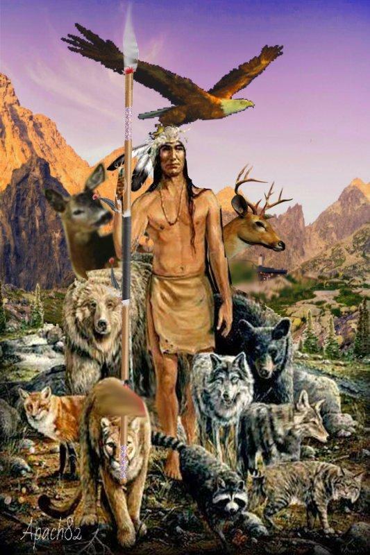 Amérindienne je vous souhaite une bonne journée et une magnifique semainne et courage a tous.
