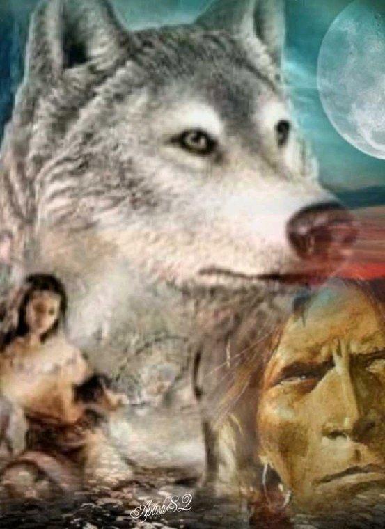 Amérindienne  les peuples veule vive libre