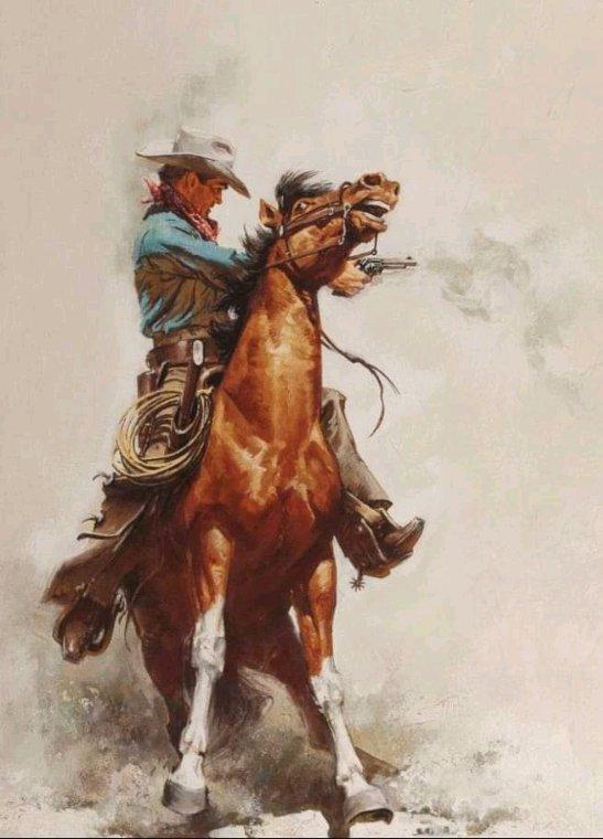 Les beaux  cowboy américain