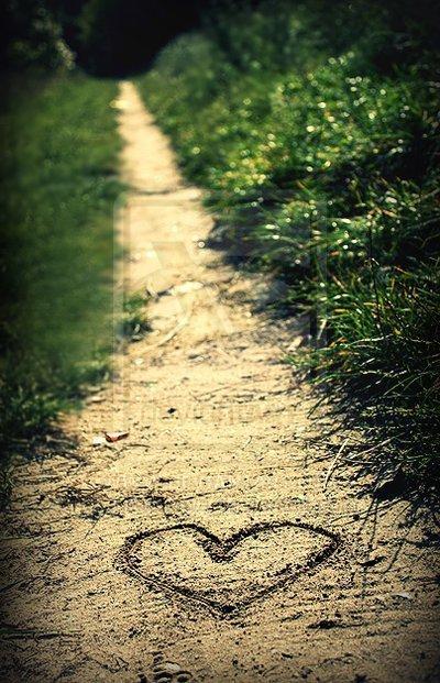 Le Chemin de l'amour !