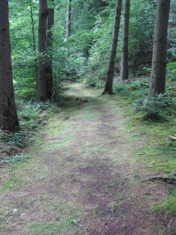 Le chemin faisant le tour du site.