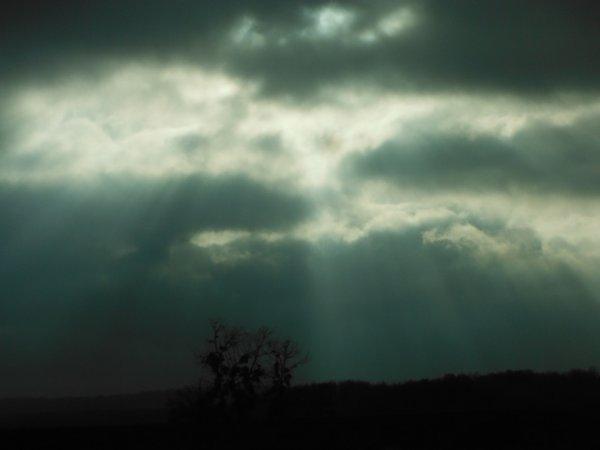 Jour pluvieux...
