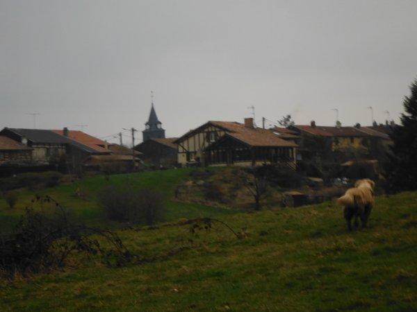 Du côté de Florent en Argonne...
